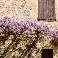 Les Charmes de Carlucet - Photography Holidays