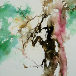 Watercolor Painting Week - Yew Brown Pink and Green (Christine Forbes) - Les Charmes de Carlucet